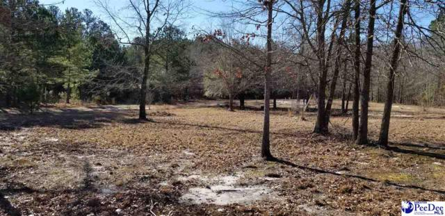 Henry Curry Rd., Patrick, SC 29584 (MLS #138018) :: RE/MAX Professionals