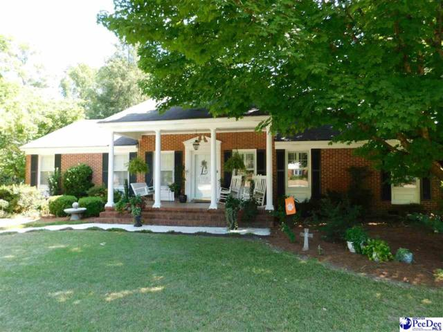 108 Alabama Drive, Darlington, SC 29532 (MLS #138254) :: RE/MAX Professionals