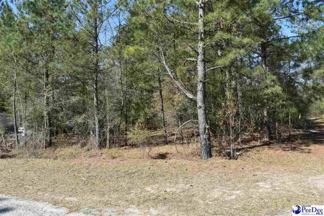 Lot 6 & 7 L E Circle, Pamplico, SC 29583 (MLS #20191239) :: Crosson and Co