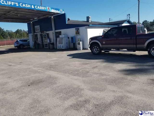 593 New Zion Road, Lake city SC, SC 29560 (MLS #20194042) :: RE/MAX Professionals