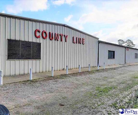1214 Old Ebenezer Road, Latta, SC 29565 (MLS #20200201) :: RE/MAX Professionals