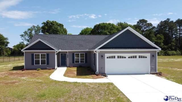 2448 Skeets Farm Rd, Darlington, SC 29540 (MLS #20201531) :: RE/MAX Professionals