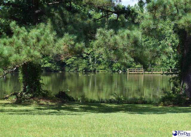 3825 Colonial Rd, Florence, SC 29501 (MLS #20202220) :: Crosson and Co