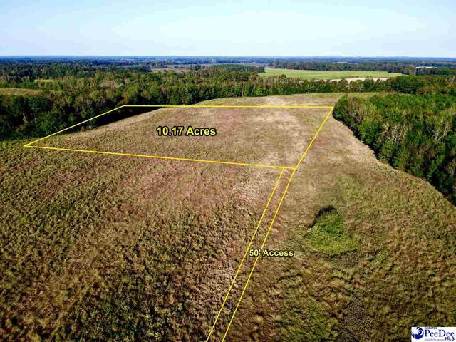 TBD New Hopewell Rd., Darlington, SC 29540 (MLS #20203818) :: Crosson and Co