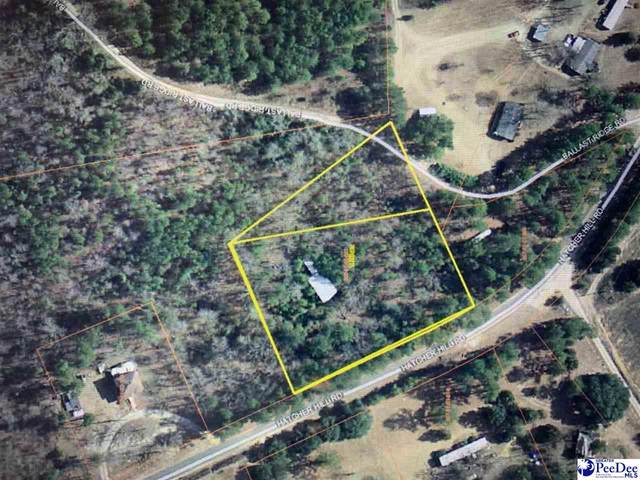 Ballast Ridge Hatcher Hill Rd, Wallace, SC 29596 (MLS #20210004) :: Crosson and Co