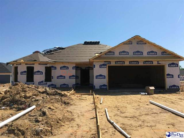 4061 Milan Road, Florence, SC 29506 (MLS #20210364) :: Crosson and Co