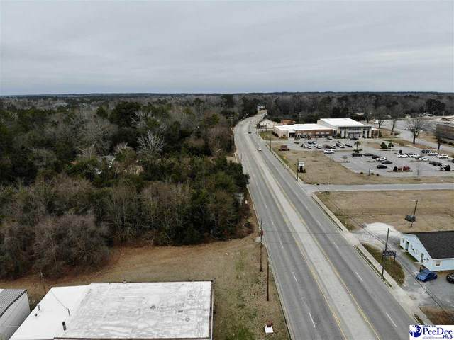 TBD N Highway 301, Dillon, SC 29536 (MLS #20210689) :: Coldwell Banker McMillan and Associates