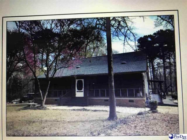 2400 Turkey Ridge Rd, Dillon, SC 29536 (MLS #20211481) :: Crosson and Co