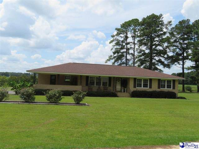 1505 Winterbury Road, Florence, SC 29506 (MLS #20212599) :: Crosson and Co