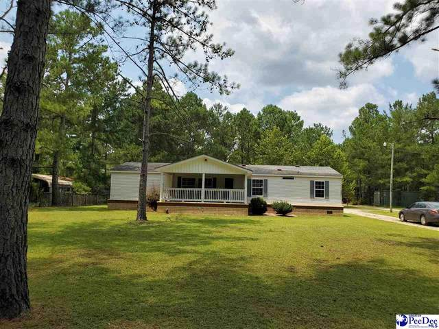 5494 Daffodil Dr., Conway, SC 29527 (MLS #20212944) :: The Latimore Group