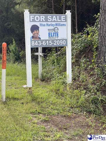 Old Marion Hwy, Florence, SC 29506 (MLS #20213141) :: Coldwell Banker McMillan and Associates