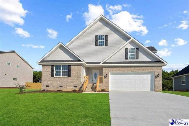 3084 S Wild Turkey Dr, Effingham, SC 29541 (MLS #20213400) :: Crosson and Co