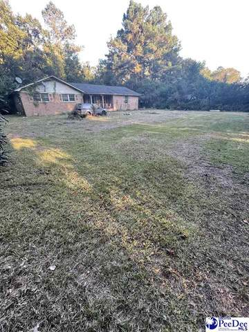 2404 Francis Marion Rd, Florence, SC 29506 (MLS #20213752) :: Crosson and Co