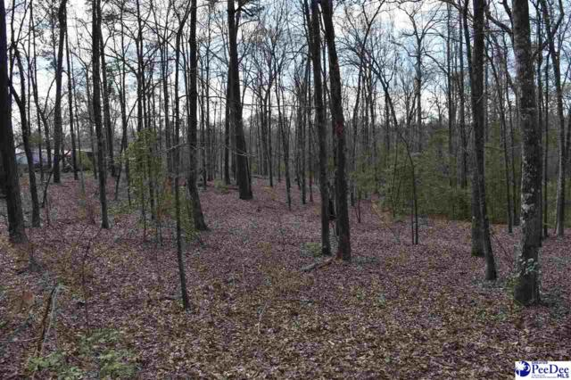 1756 & 1760 Jefferies Creek Blvd., Pamplico, SC 29583 (MLS #127273) :: Crosson and Co
