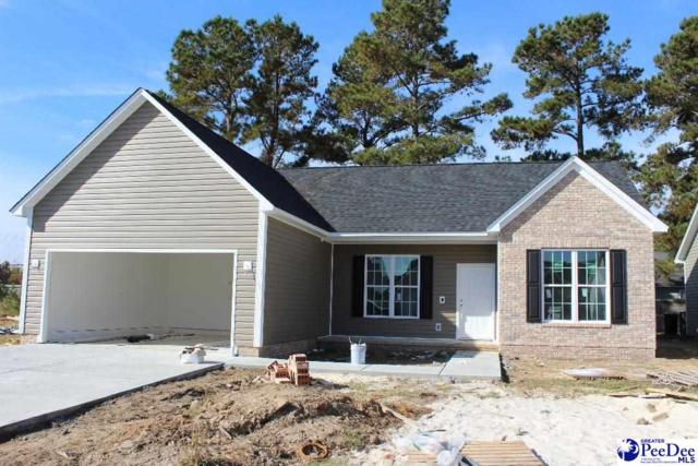 3005 Red Berry Circle, Florence, SC 29541 (MLS #134437) :: RE/MAX Professionals