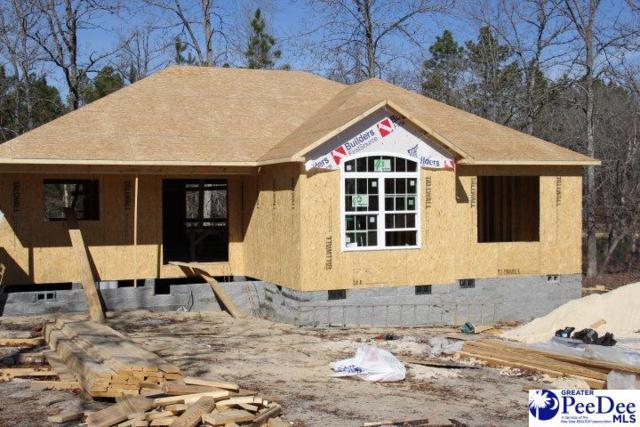 2204 Forest Breeze, Hartsville, SC 29550 (MLS #134722) :: RE/MAX Professionals