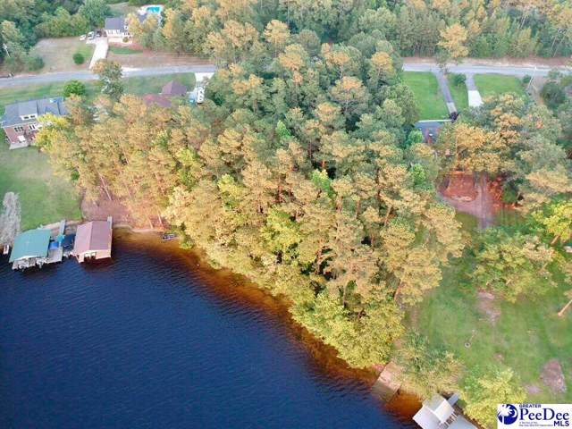 Lot Sandy Point Drive, Hartsville, SC 29550 (MLS #20191841) :: Coldwell Banker McMillan and Associates