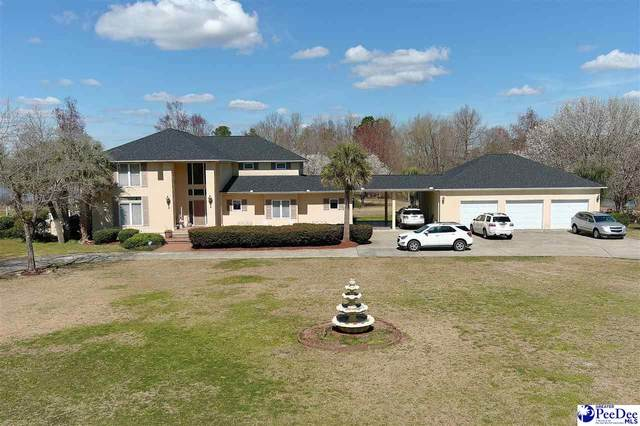 1252 Shore Dr, Manning, SC 29102 (MLS #20210668) :: The Latimore Group