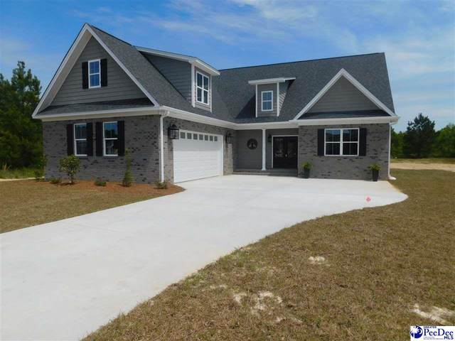 3407 Old Ivey Lane, Florence, SC 29501 (MLS #20201137) :: Crosson and Co