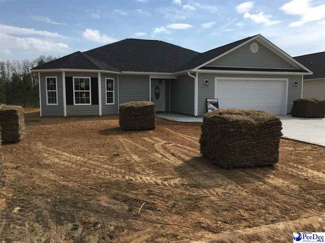 4040 Milan Road, Florence, SC 29506 (MLS #20210274) :: Crosson and Co
