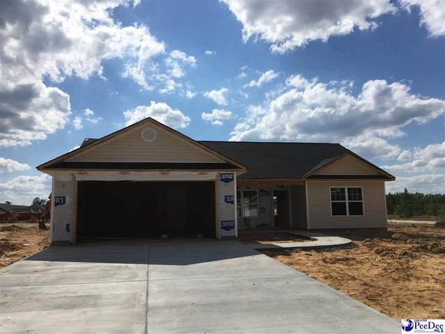 4055 Milan Road, Florence, SC 29506 (MLS #20211127) :: Crosson and Co