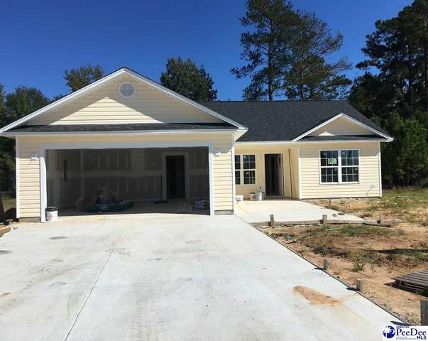 4050 Milan Road, Florence, SC 29501 (MLS #20201712) :: Coldwell Banker McMillan and Associates
