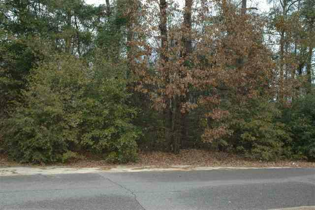 Lot 6 Timberlake Dr, Florence, SC 29501 (MLS #106761) :: RE/MAX Professionals