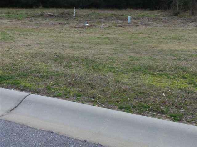 Lot 31 Oaks Bay Drive, Georgetown, SC 29440 (MLS #111275) :: RE/MAX Professionals