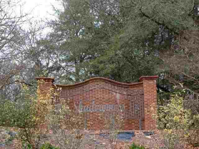 Lot 2 Mossy Oak - Photo 1