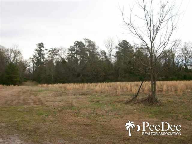 9.4 acres Lloyd St. - Photo 1