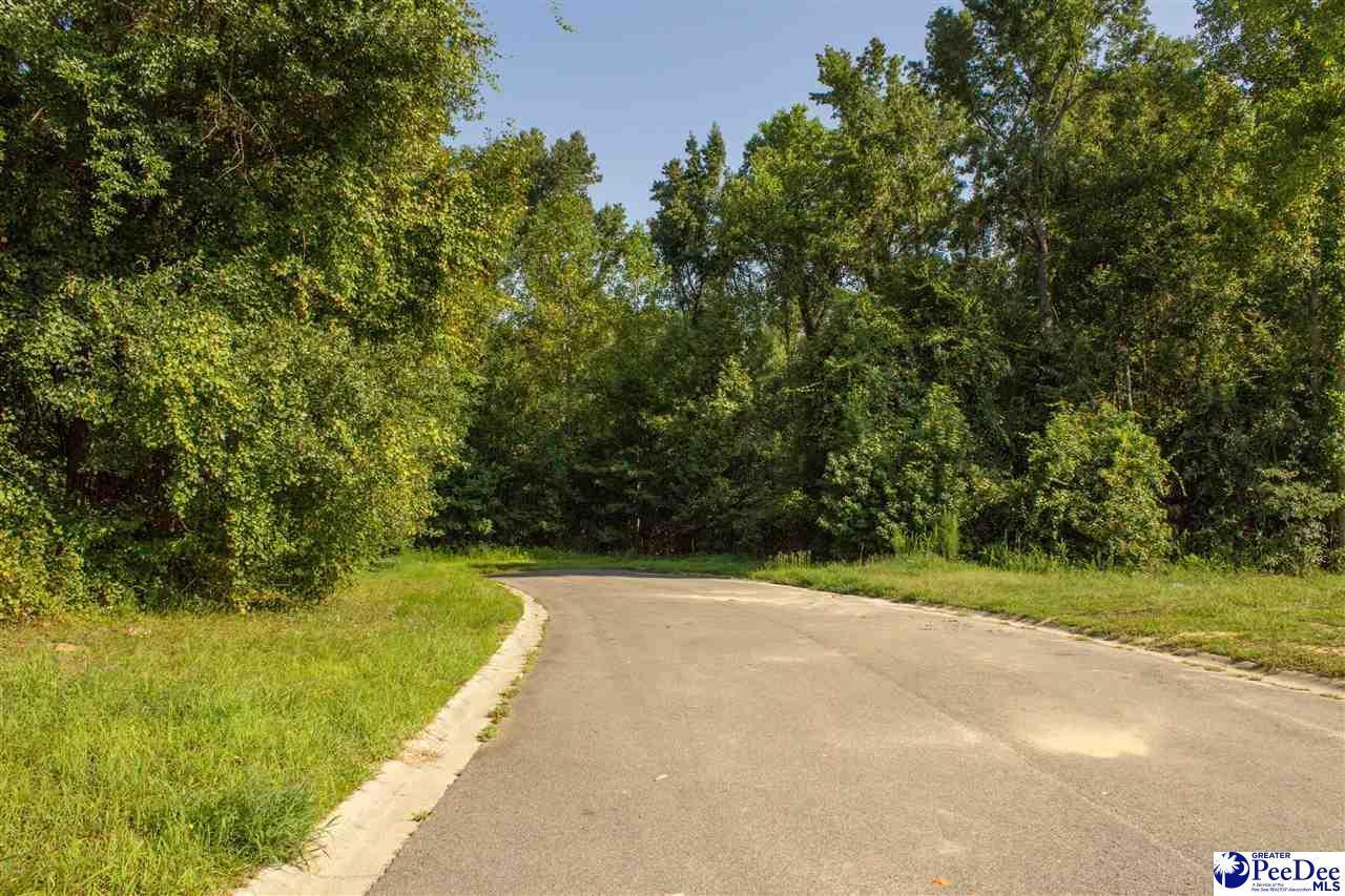 Lot 87 Shadow Creek Drive - Photo 1