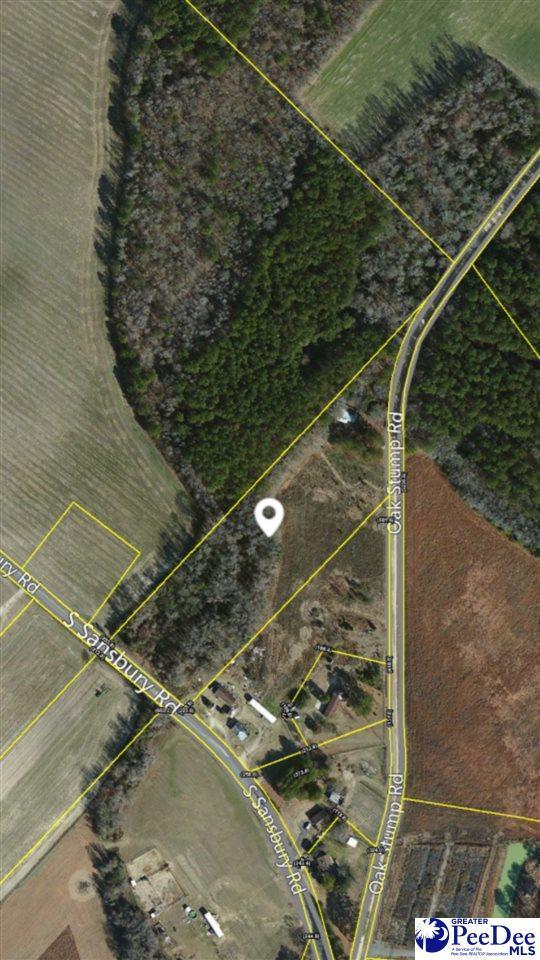2300 Oak Stump Rd., Timmonsville, SC 29161 (MLS #133933) :: RE/MAX Professionals