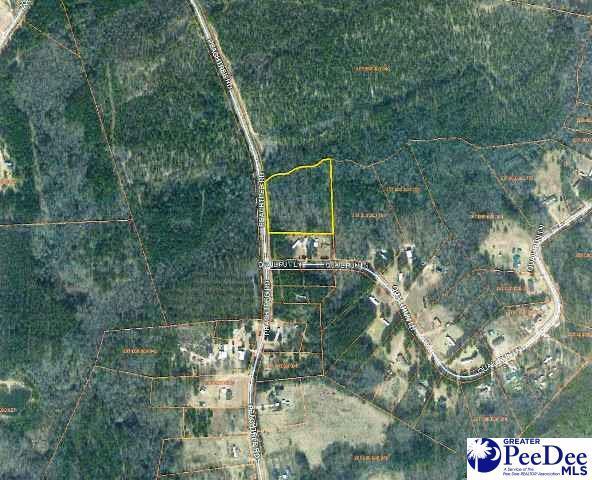 Peach Tree Rd. Lot 40- Quail Run Subdv, Chesterfield, SC 29709 (MLS #134217) :: RE/MAX Professionals