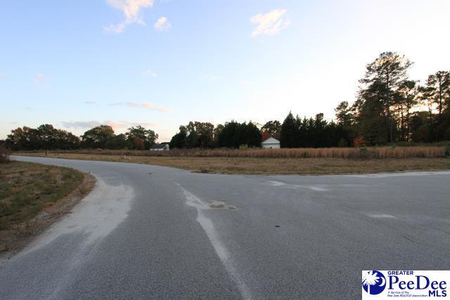 1643 Rugby Lane, Florence, SC 29501 (MLS #135425) :: RE/MAX Professionals