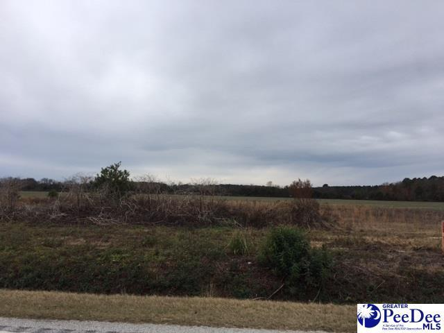 TBD Wisacky Highway, Bishopville, SC 29010 (MLS #135450) :: The Latimore Group