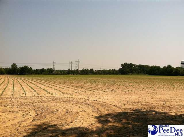 UNZONED ACRES N Cashua, Florence, SC 29501 (MLS #137407) :: RE/MAX Professionals