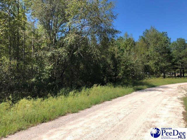 6.60 +/- Tract Longhorn Lane, Cheraw, SC 29520 (MLS #138577) :: RE/MAX Professionals