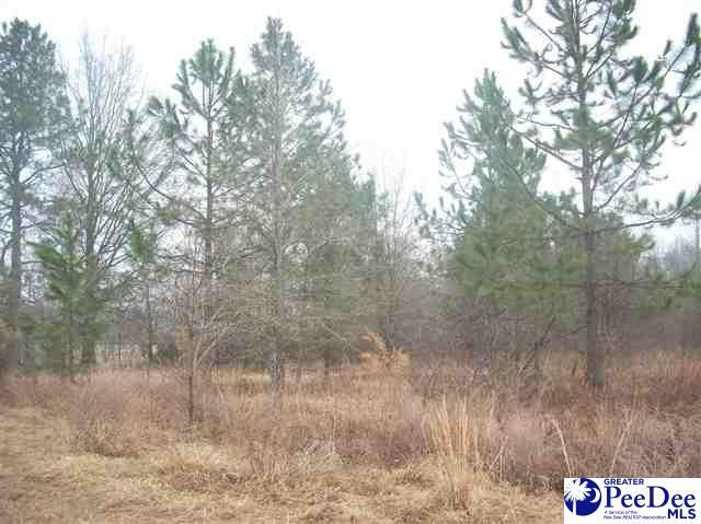 Lot 7,8,9 & 10 Cloverdale Rd. - Photo 1