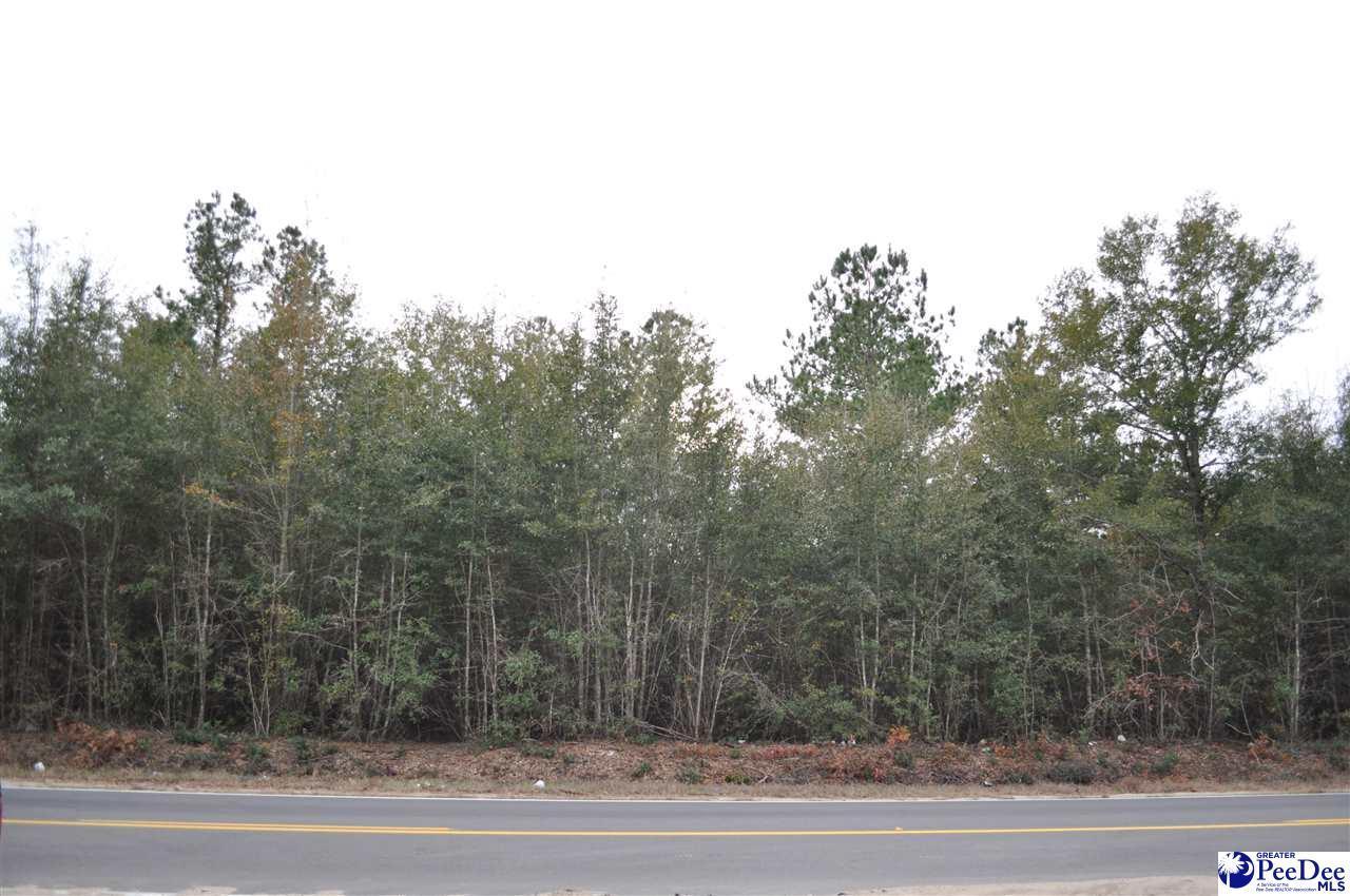 2.1 acres Oakridge Road - Photo 1