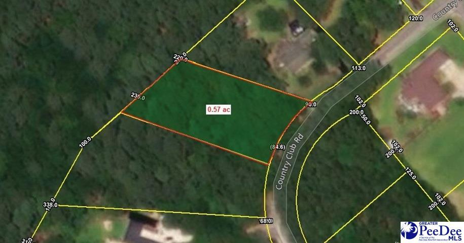 Lot 9 Country Club Road - Photo 1