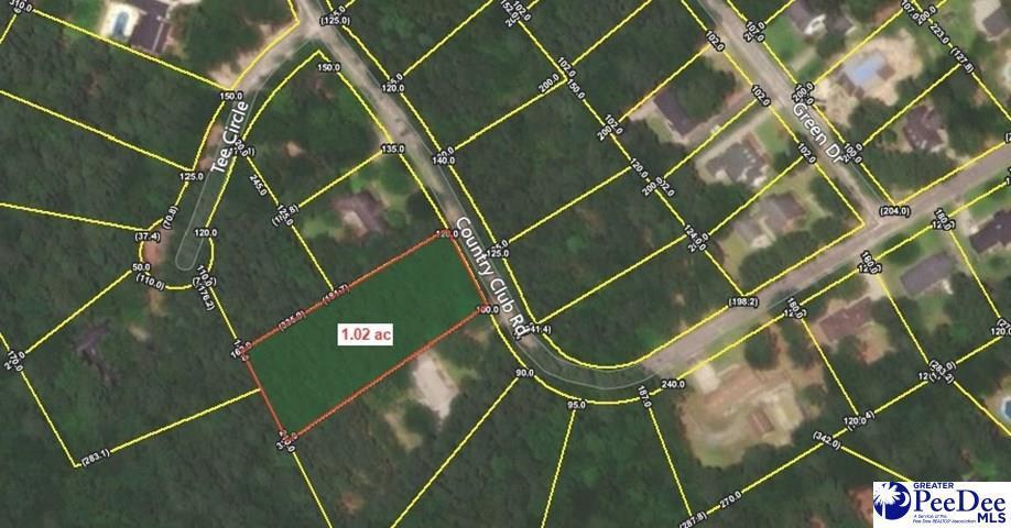 Lot 19 Country Club Road - Photo 1
