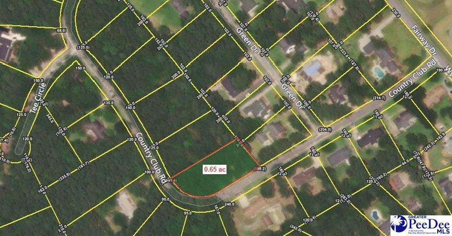 Lot 59 Country Club Road - Photo 1