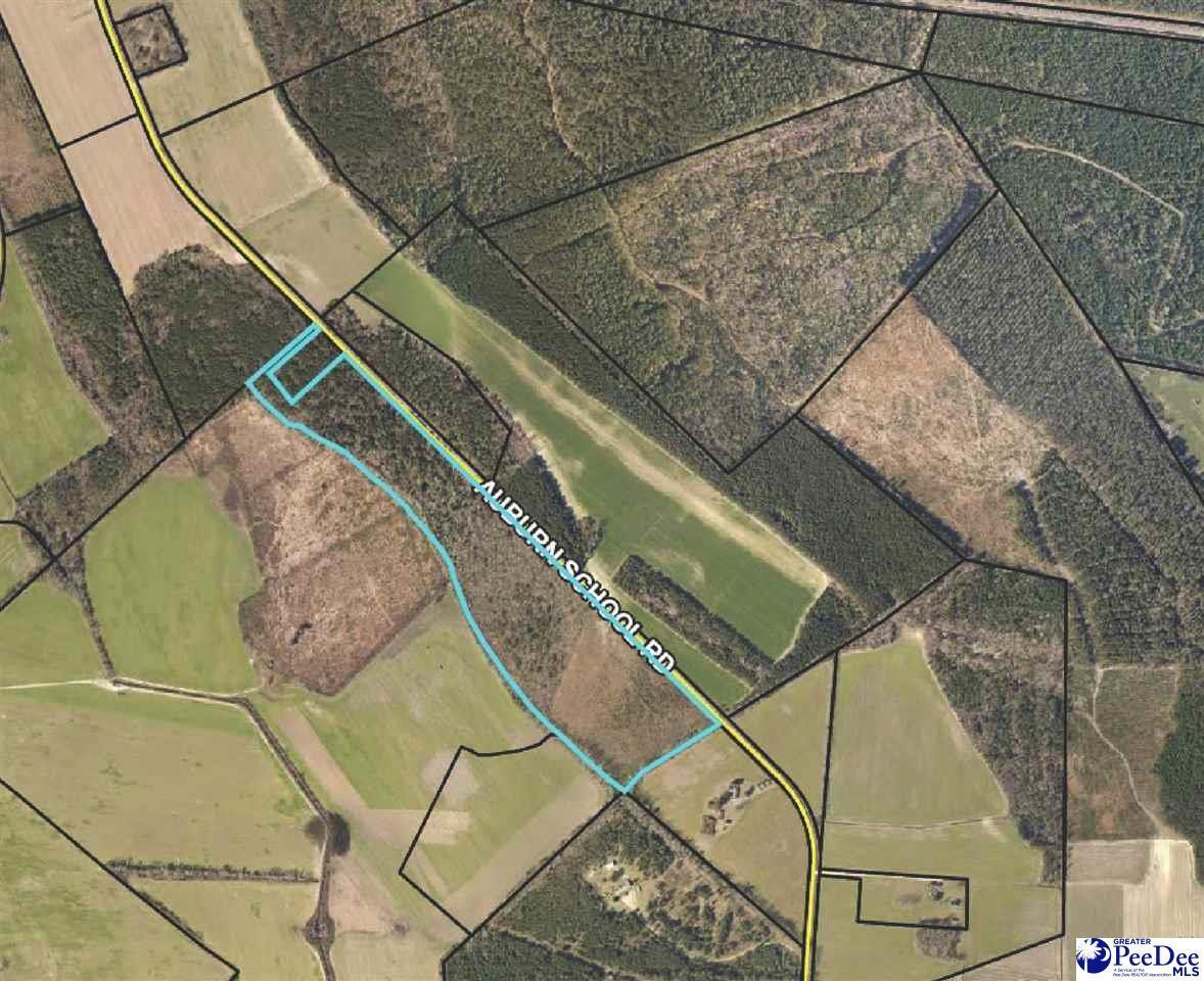 51.3 Acres Auburn School Road - Photo 1