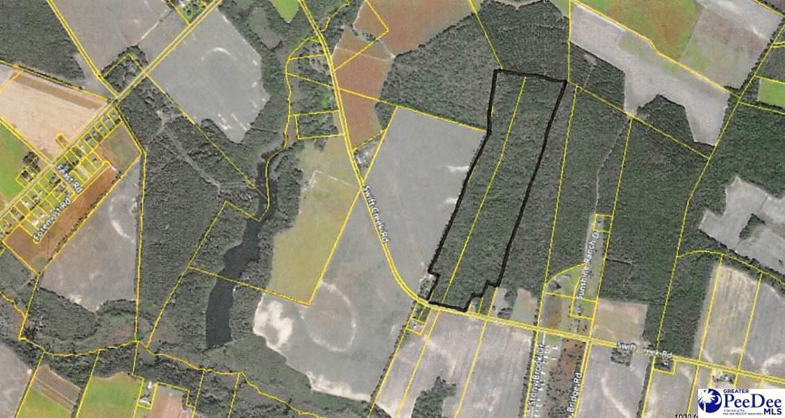 66.87 Acres Swift Creek Road - Photo 1