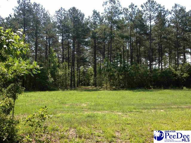 45 +/- Acre Tract Highway 177, Wallace, SC 29596 (MLS #20190469) :: RE/MAX Professionals