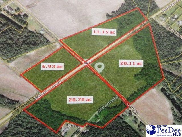 Hwy 401 & Potato House Road, Darlington, SC 29532 (MLS #20190500) :: RE/MAX Professionals