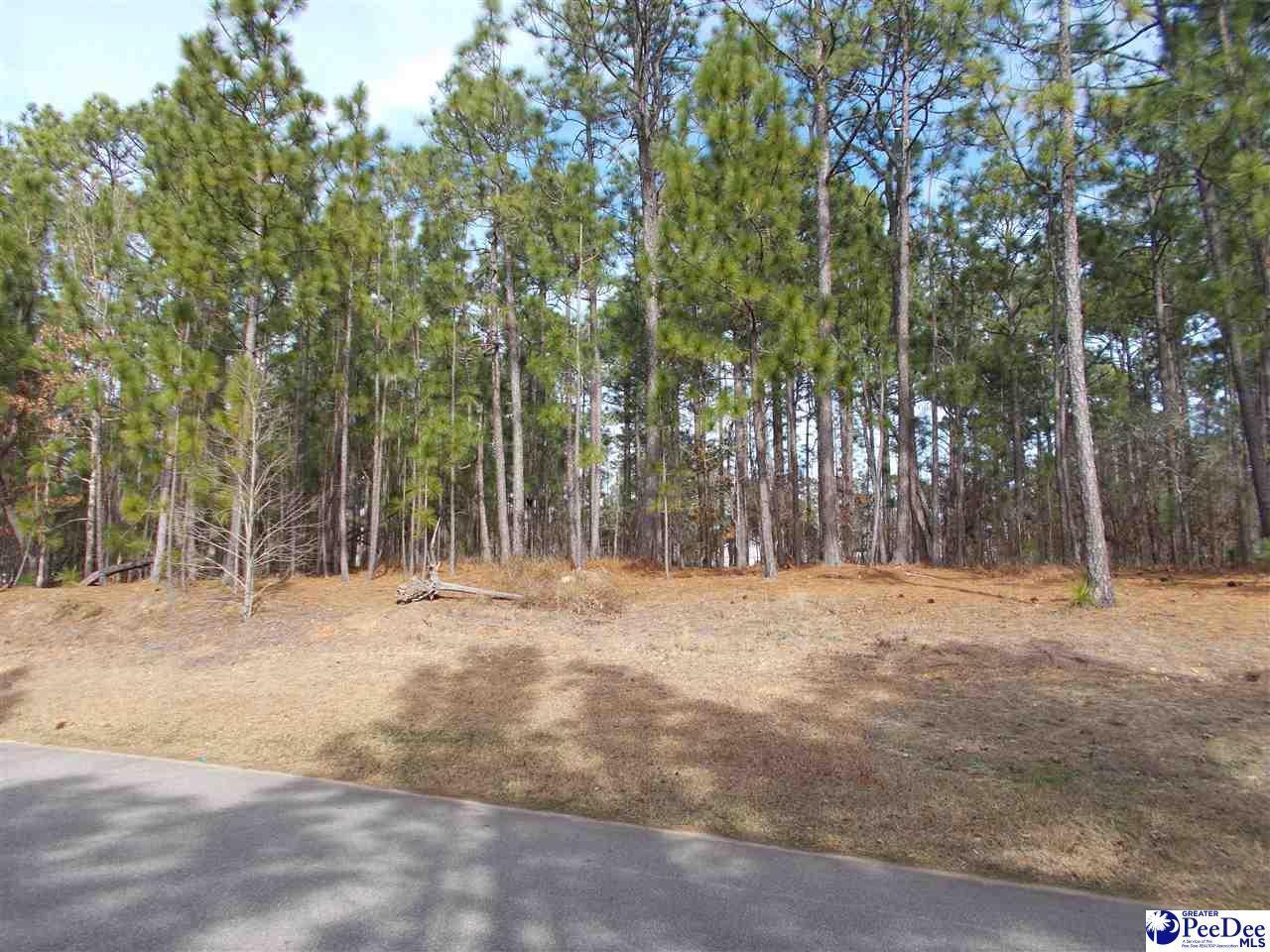 Lot 35 Woodbine Dr - Photo 1