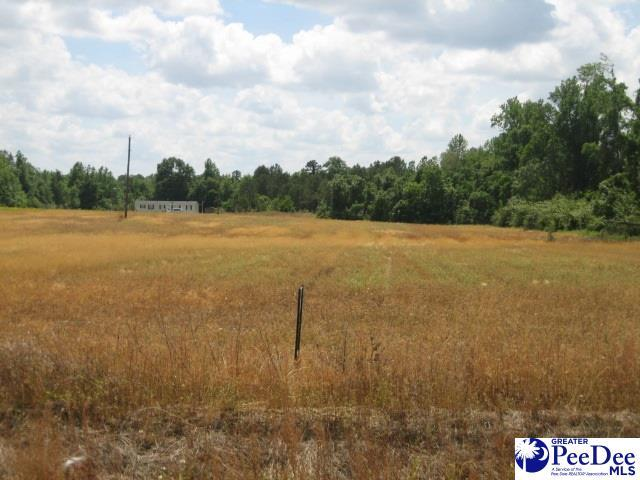 2909 S Pamplico Hwy, Pamplico, SC 29583 (MLS #20191562) :: RE/MAX Professionals