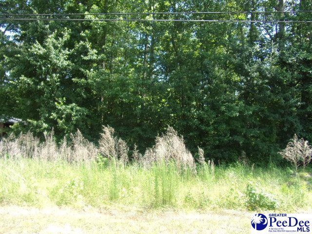 1605 Willis Dr, Hartsville, SC 29550 (MLS #20191920) :: RE/MAX Professionals