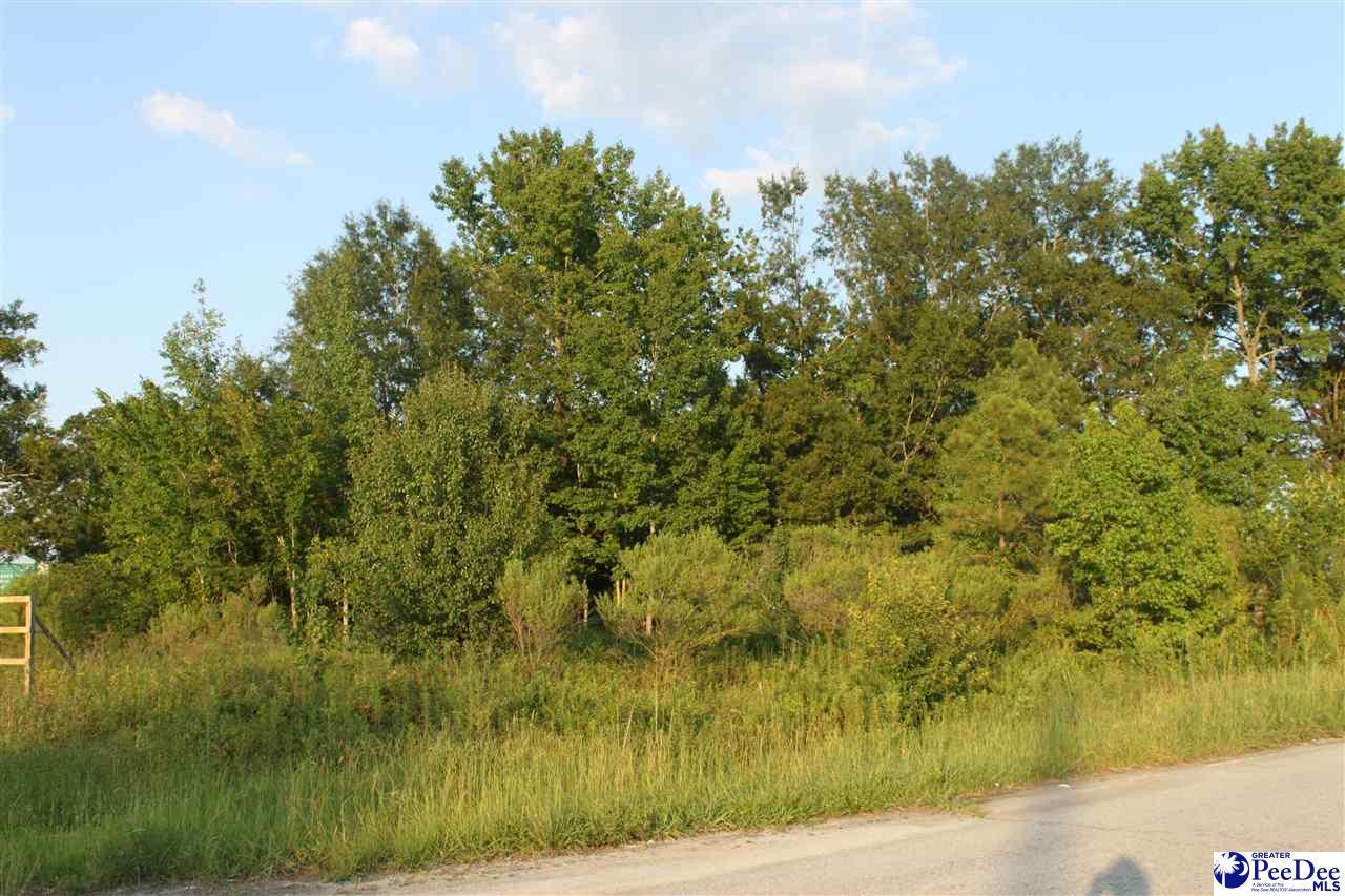 15-401 Hwy 15 And 401 - Photo 1